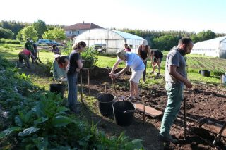Jornadas sobre cultivo biointensivo