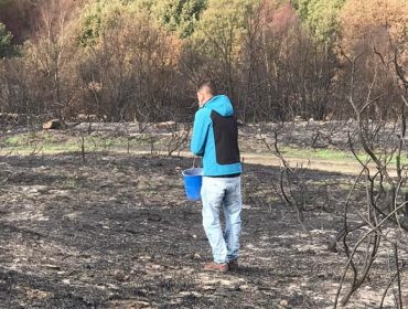 Siembran centeno en montes quemados de Cualedro para reducir la erosión del suelo