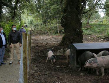 Medio Rural abre una convocatoria de iniciativas para optar a los fondos de recuperación por la Covid
