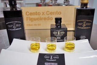 Curso en Monforte de cata de aceite de oliva