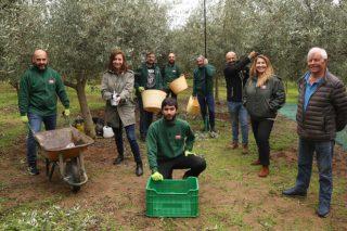 Aceites Abril presenta la nueva cosecha de su Aceite de Oliva Virgen Extra 100% gallego