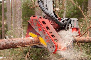 Cabezales forestales Log Max: Simplicidad, fiabilidad y durabilidad made in Suecia