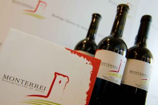 Un total de 27 vinos de la D.O. Monterrei superan los 90 puntos en la Guía Peñín 2021
