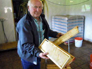Miel Rural, la constancia de un pionero de la producción en ecológico