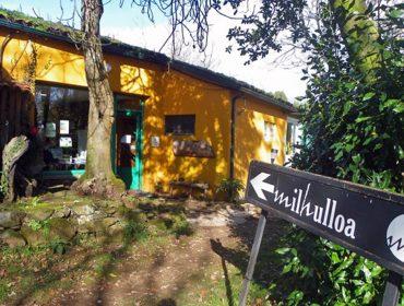 Milhulloa, 20 años recuperando las plantas medicinales gallegas