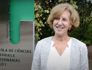 «En Portugal se está viendo de nuevo interés por el cultivo de la avellana de la mano de jóvenes empresarios»