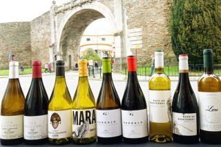 LA DO Monterrei promociona en Lugo sus vinos