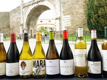 LA DO Monterrei promociona en Lugo sus vinos  con profesionales de hostelería y restauración