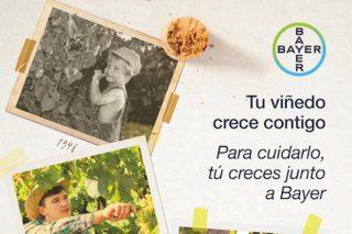 Bayer lanza su nueva imagen de campaña para viñedo