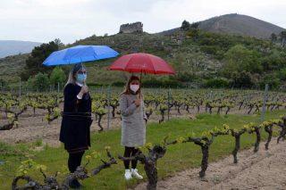 La DO Monterrei propone crear un centro vitivinícola orientado al enoturismo