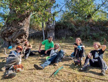 Amarelante, la cooperativa que está revitalizando la producción de castaña en Manzaneda