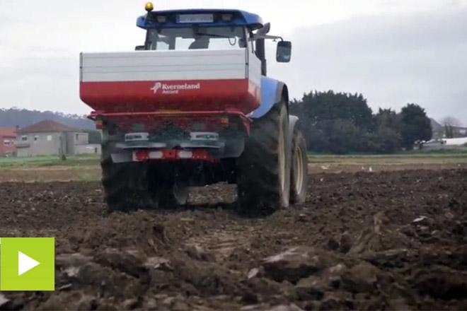 Entec, un fertilizante de alto rendimiento para maíz