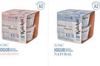 La empresa gallega Kalekói, pionera en lanzar al mercado yogures con leche A2
