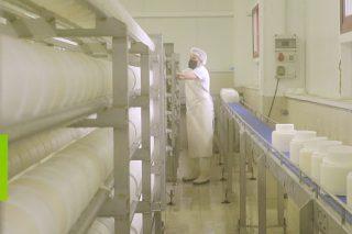 El arte de hacer queso: tiempo, tradición y talento