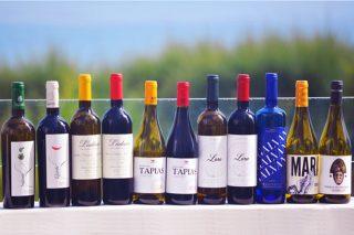 Los vinos de Monterrei se presentan a profesionales del Canal Horeca en Santander