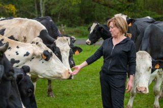 """""""Para que las vacas den buena leche, hay que tratarlas con cariño"""""""