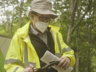 Potencialidad de las frondosas caducifolias para madera en Galicia