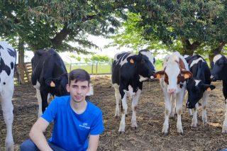 «Feiradeza será el primer certamen de ganado frisón que se celebra en Galicia tras el inicio de la pandemia»