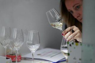 Resultados de las catas de los vinos y aguardientes de Galicia 2021