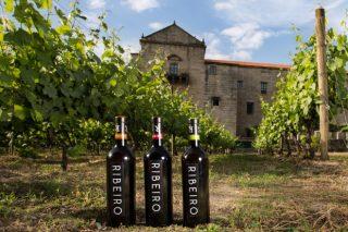 Premiados 30 vinos gallegos en el Concurso Mundial de Bruselas 2021