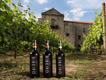 """Estos son los 16 vinos de la DO. Ribeiro que lograron """"Distinciones Gallaecia  2021"""""""