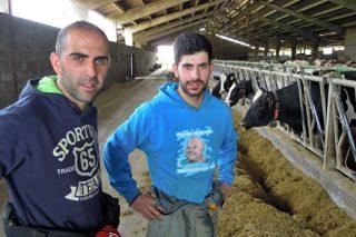Novoa SC, altas producciones fruto de un minucioso cuidado del ganado