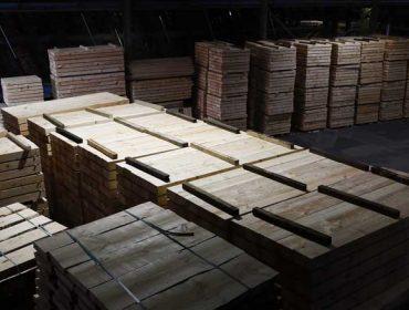 La 'fiebre' de la madera: cómo afronta Galicia la nueva burbuja global