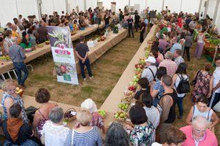 San Sadurniño volverá a celebrar la Feria Rural el próximo sábado