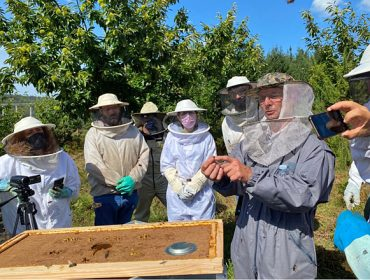 «Es un error introducir otras razas de abejas porque cuando se cruza con la local aparece más agresividad»