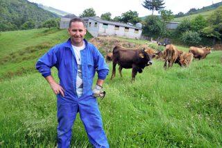 Amanei SC, apuesta por la raza vianesa en la montaña de Lugo