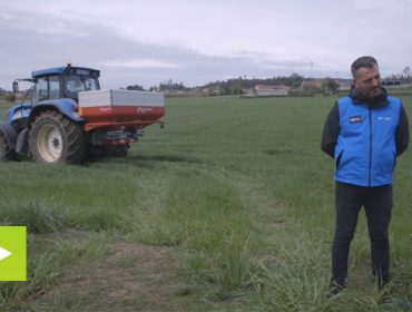 ENTEC®, el abono más eficiente para cubrir todo el ciclo de la pradera