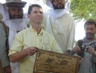 Gilles Fert, un referente mundial en apicultura, impartirá cursos este fin de semana en Galicia