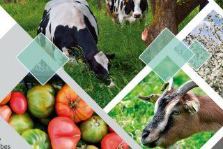 Curso en Lugo para la incorporación a la ganadería y agricultura ecológica