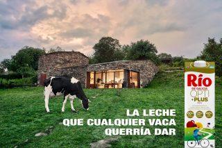 Grupo Lence saca al mercado su nueva leche Río ultrafiltrada