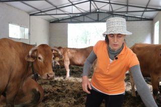 «Gracias a los collares con GPS, sé en todo momento donde están las vacas, gané en tranquilidad y en tiempo»